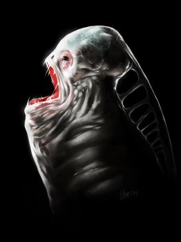Unknown species from deep sea by PixelTribe