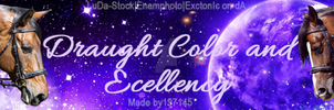 Draught Color and Excellency Banner by jlryanhorses