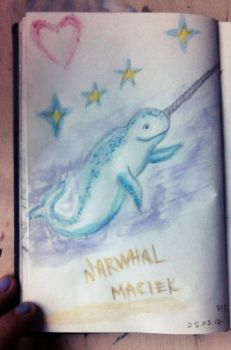 Narwhal M (quick sketch) by PeterWhale