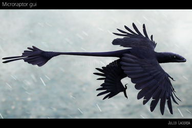 The Four-Winged Raven by Julio-Lacerda