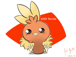 Hot chick, Torchic by LuisMGalindo