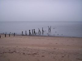 An Old Pier, or a Pirate Ship? by Zsy