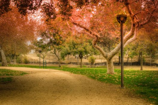 Johnny Carson Park by mikytrance