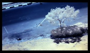Second attempt at IR by nkaidash