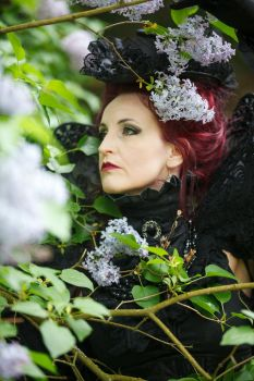 Stock - Gothic lady portrait in the flowers by S-T-A-R-gazer
