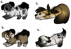 Puppy Adopts 0.1 : Closed by AdoptzShop