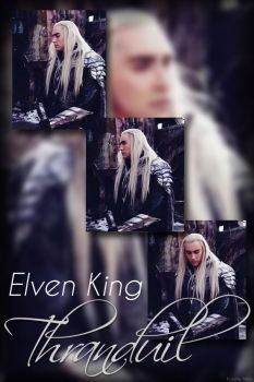 The Elvenking Portrait by kayelleallen