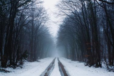 Mystic road - D205 by neoflo