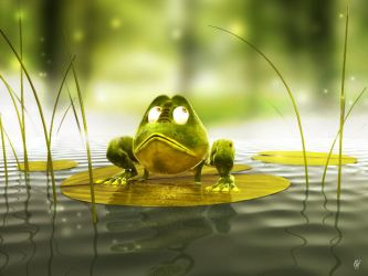 The froggie by K-A-Y-O