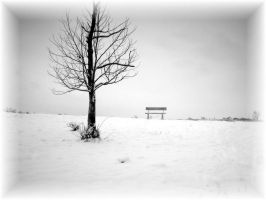 The Lonely Bench IV by viviP