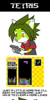 TETRIS : The Mind Snapper Game by megawolf77