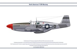 Mustang USAAF 335th FS 1 by WS-Clave