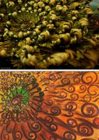 13. Abstractography - Rose of Jericho by Ayaneria