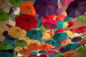 Umbrellas. by AmyPatonPhotography