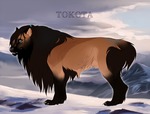 Enoch 27857 by TotemSpirit