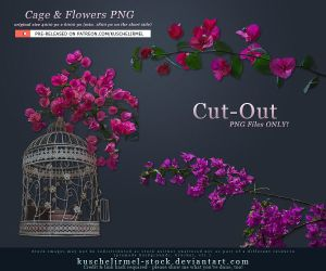Cage and Flowers Cut-Out PNG by kuschelirmel-stock
