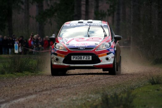 Fiesta @ Rallye Sunseeker by adam-mccartney