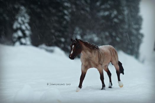 Following the snow trail~ by SilverCrescents