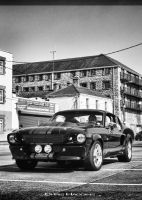 shelby GT500 Eleanor by haggins11