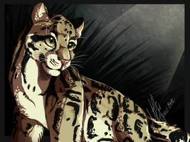 Clouded Leopard by Ghoul-bite