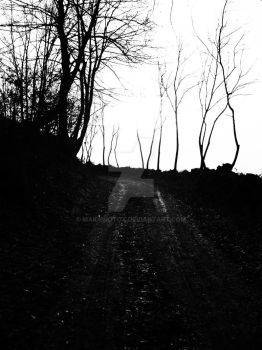 Old road by maidphotox