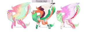 Peakwings - 3rd batch {closed} by velocirapioca
