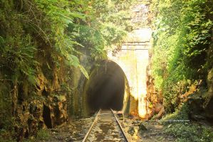 Helensburgh Abandoned Tunnel by tawunap159