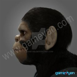 Cinematic 3D Character of Kung Fu Ape - Florida by gameyan