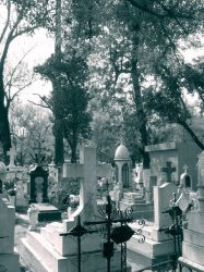 the resting place by WhiteorblackLuis