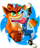 CMSN Crash Bandicoot ~ Twinsanity by ax3lbravo