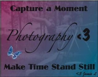 The love of photography by ScorpioDesigner