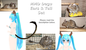 .:MMD:. Degu ears and tail set -DOWNLOAD- by Miku-Nyan02