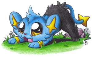 Chibi Pokemon - Shinx by TaylorTrap622