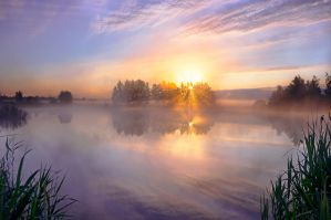 lake in morning fog by StargazerLZ