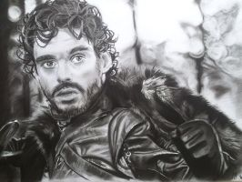 Robb stark (Game of thrones) by mchofmann