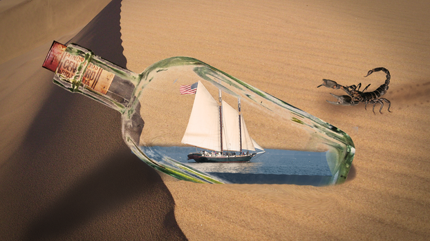Ship in a Bottle by kado897
