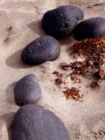 Beach stones 2 by Evicas