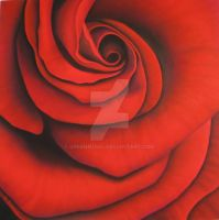 Rose XII by GreenMusic