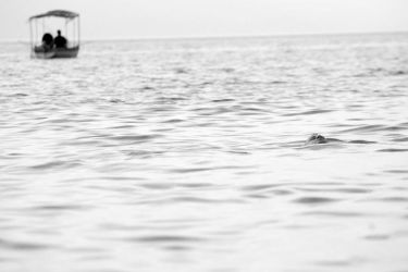 swimming with the boats by onabibano