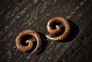 wood spirals by sudrabs