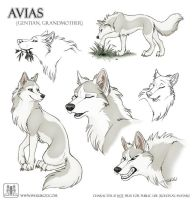 Sketches Avias by TaniDaReal