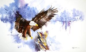 Speed painting - Bald Eagle by Abstractmusiq