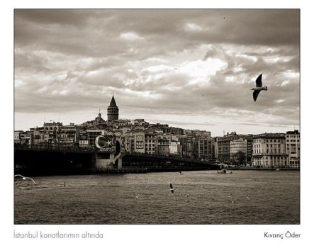 Istanbul is under the my wings by kivancoder