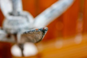 DOF Anchor by BusterBrownBB