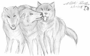 Wolves Chilling by KaiKudo