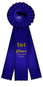First Place Ribbon by SilverCreekEquestria