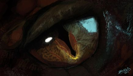 Smaug's Eye by Borsio