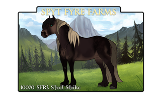 10070 SFR's Steel Strike by SpytFyre-Ranch