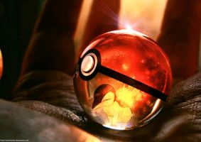 Cyndaquil in a Pokeball