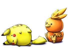 Torchic won the match by Arenheim